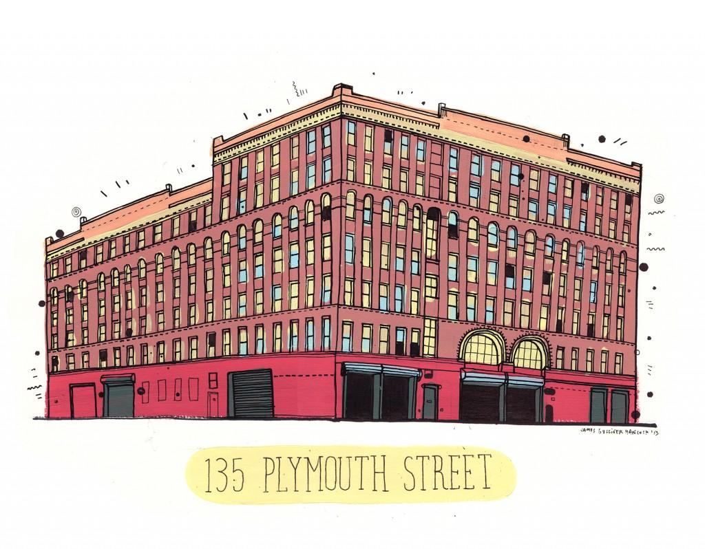 135 PLYMOUTH ST, BROOKLYN, NY 11201